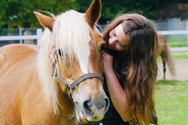 co therapeut pferd