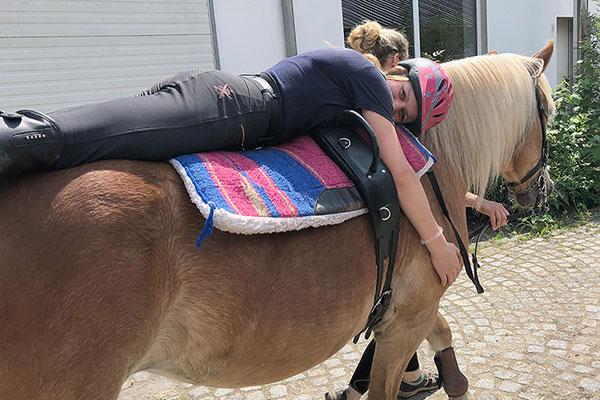 ergotherapie mit Pferden